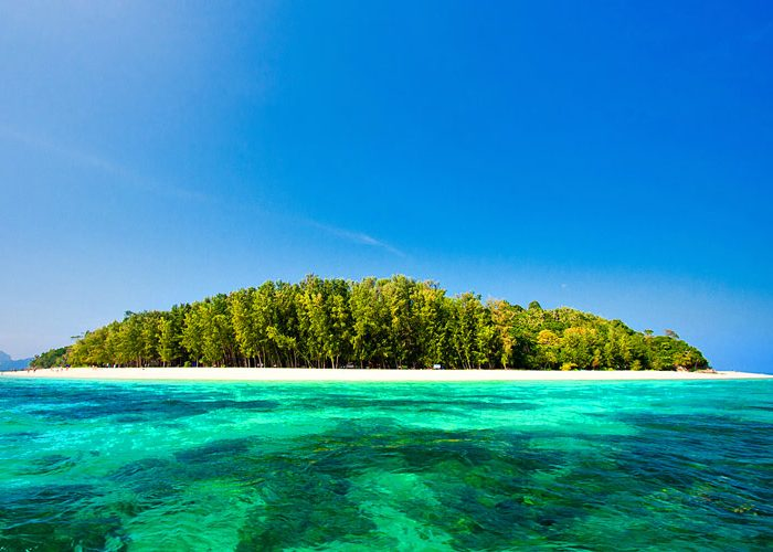 เกาะไม้ไผ่